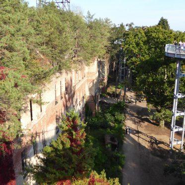 Treffen der Chronistenvereinigung Potsdam-Mittelmark: Blick vom Baumkronenpfad Beelitz Heilstätten auf ein Gebäude, welches mit vielen Bäumen bewachsen ist